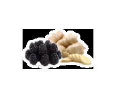 Blackberry Ginger Balsamic Condimento