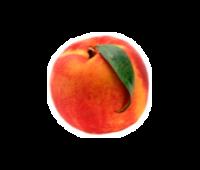 Ripe Peach White Balsamic Condimento