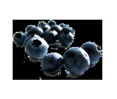 Wild Blueberry Balsamic Condimento