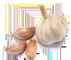 California Garlic Olive Oil