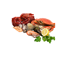 Gourmet Seafood Collection