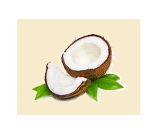 Coconut White Balsamic Condimento