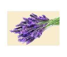 Lavender Dark Balsamic Condimento