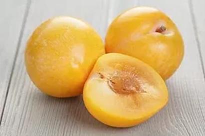 Umeboshi Plum White Balsamic Condimento